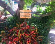 The Garden Resort visits Casa Morisco